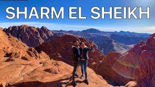 ШАРМ ЭЛЬ ШЕЙХ. Рассвет на горе Синай! (Гора Моисея). Это впечатляет!!!  ЕГИПЕТ 2019 VLOG #2
