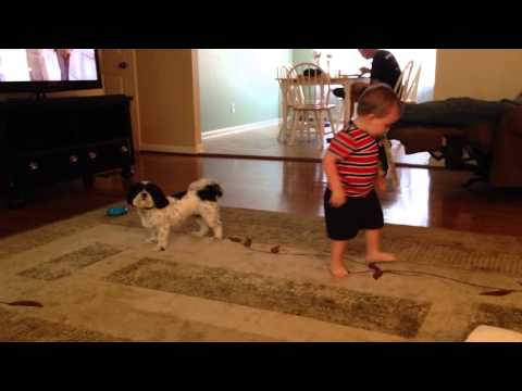 Dog and Kid Spin in Circles