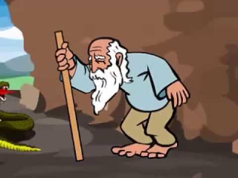 Yaşlı Adam Ve Yılan