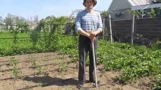 Как легко и быстро посадить семена огурцов(В этом видео показано как можно сберегая спину и колени посадить семена огурцов или кабачков или других..., 2015-05-12T20:38:52.000Z)