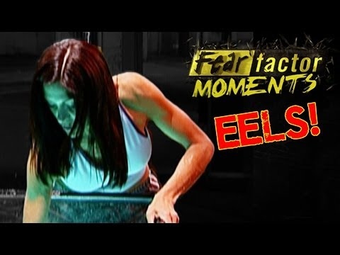Fear Factor Moments | Electric Eels