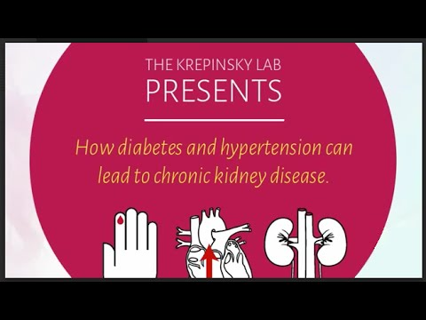 How Diabetes and Hypertension Can Lead To Chronic Kidney Disease