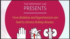 hqdefault - High Blood Pressure Results Kidney Disease