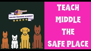 Dog Training Tutorial  Teaching Middle, the portable safe place for your puppy