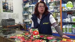 Помощ при избора за семена на домат: Съвета на агронома - част 1/4.