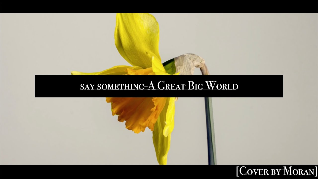 say something-A Great Big World [Cover by Moran]