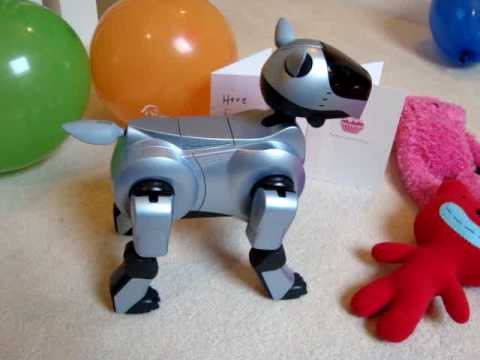 Woofwoof the AIBO's Birthday Song!!