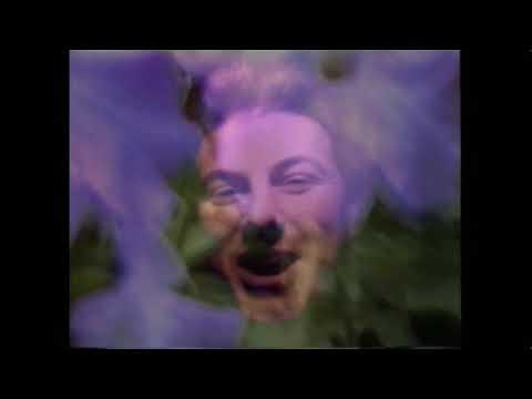 Underground Lovers - In My Head (1996)
