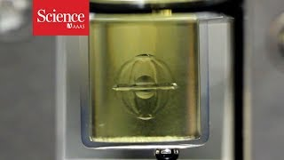 Watch 3D printed objects appear in the middle of a gel