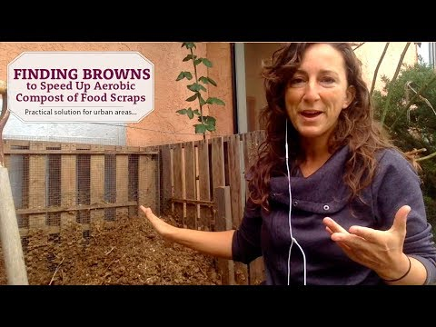 "What to do if you have no ""Browns"" for your Aerobic Compost? (Composting in the City)"