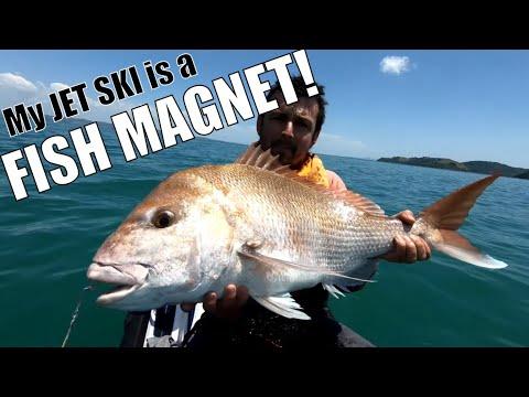My Waverunner Fishing Jet Ski Is A FISH MAGNET!