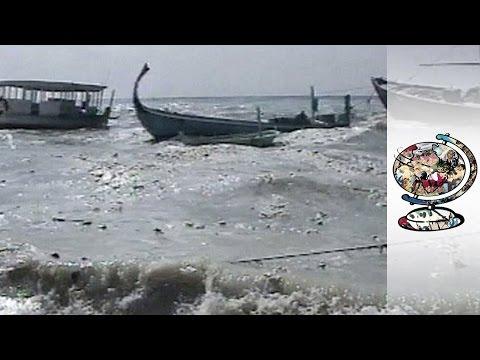 When The Tsunami Hit Paradise