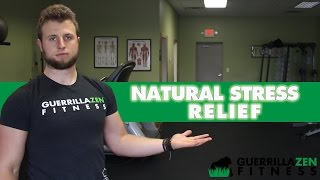 Top 3 Stress Management Tips