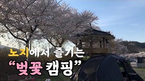 캠핑 Vlog | 완벽한 노지에서 벚꽃캠핑💗 삼겹살&된장찌개&멘보샤&짬뽕에 소주먹방 ! | camping vlog