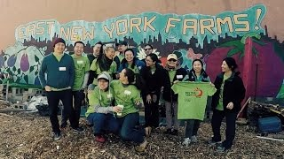 Team New York Real @ East New York Farms | New York Cares Day Spring 2016
