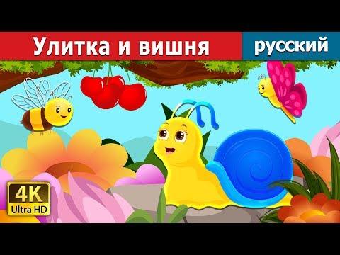 Улитка и вишня | сказки на ночь | русский сказки