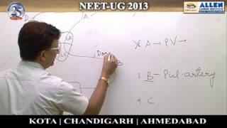 Biology Ques: 31, 38 (NEET-UG 2013)