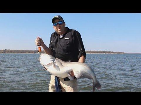 FOX Sports Outdoors SouthWEST #38 - 2017 Lake Texoma Trophy Blue Catfish