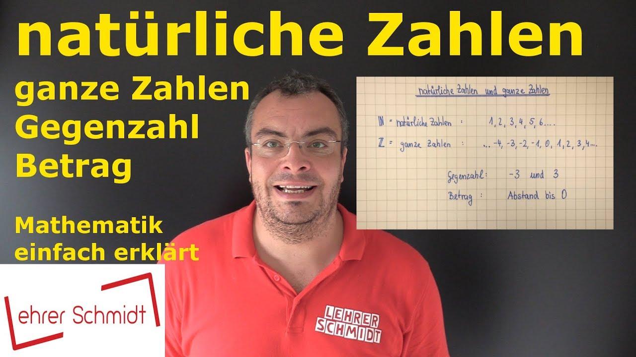 natürliche Zahlen & ganze Zahlen | Mathematik - einfach erklärt | Lehrerschmidt
