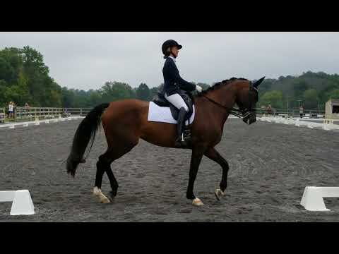 Hannah Irons and Scola Bella - Third Level test 3  - 77.5%|