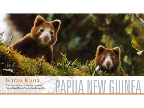 Karau Kuna, Papua New Guinea – Whitley Awards 2016