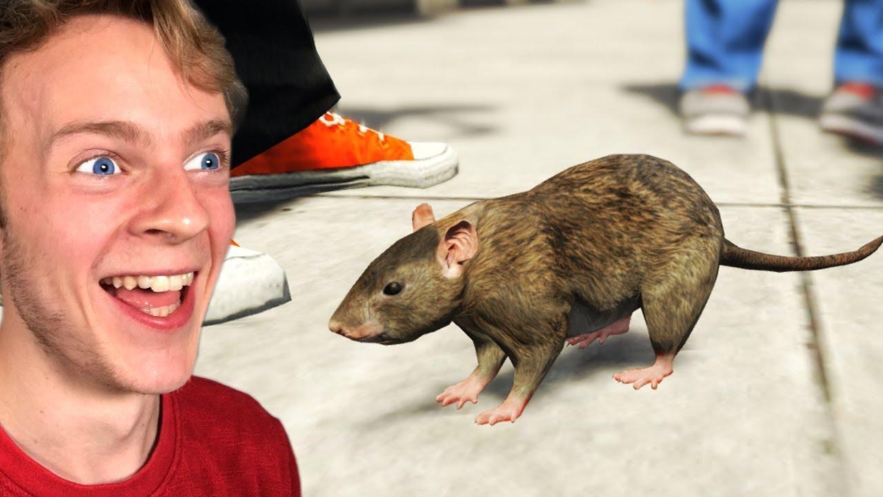 Playing GTA 5 as ANIMALS! (GTA 5 Mods)