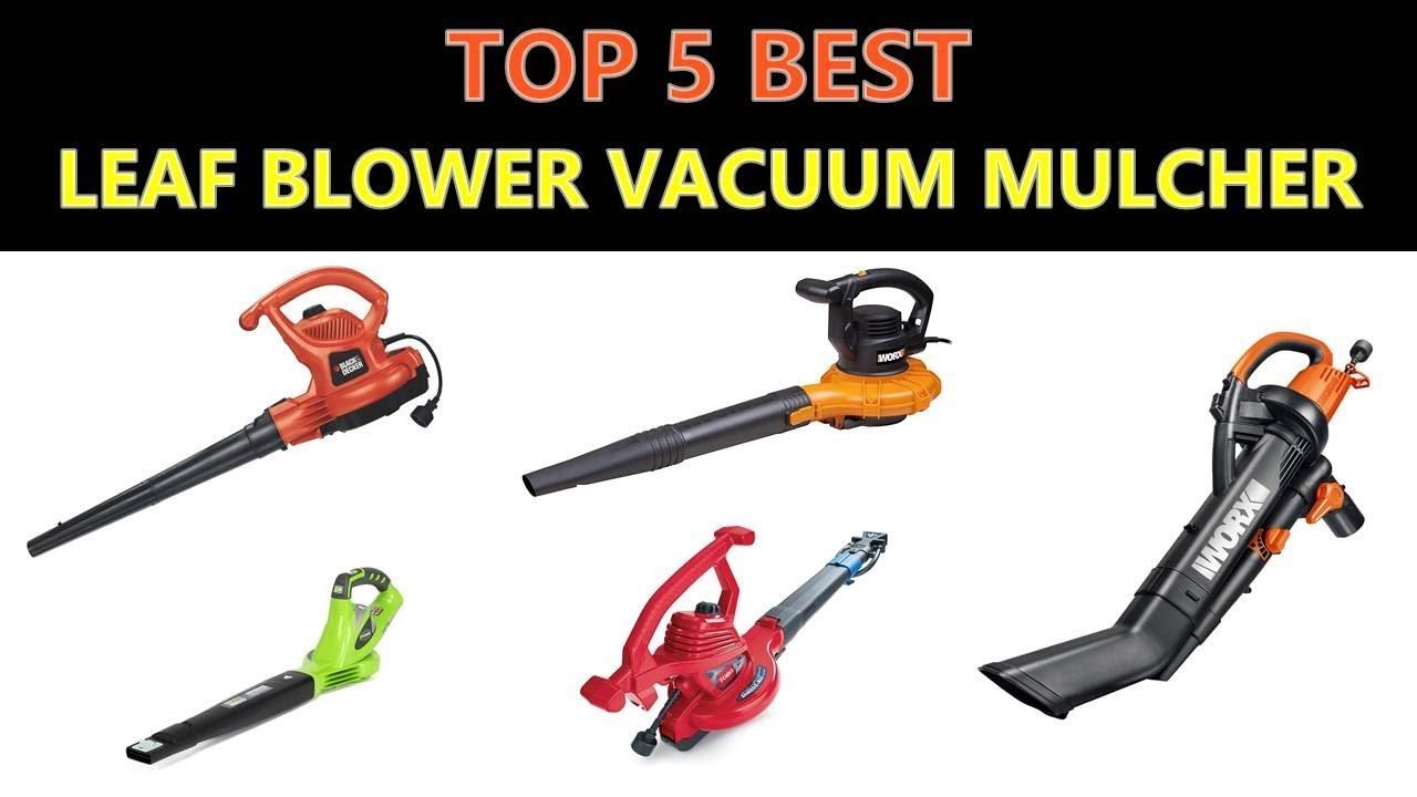 Best Leaf Blower Vacuum Mulcher : Best leaf blower vacuum mulcher youtube