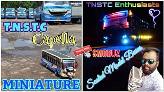 Miniature Bus - TNSTC Capella Version |📏🚍SMOBUZ-Scaled Model Bus | TN 30 N 1600 | Tribute to TNSTC🚍