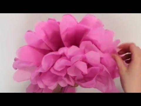 Learn to Make Tissue Paper Pom Poms - MyVoucherCodes