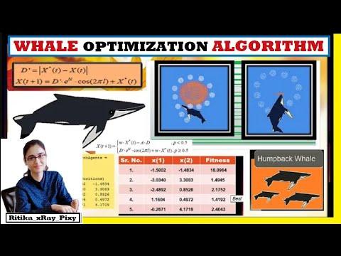Whale Optimization Algorithm | Mathematical Model | Fitness Value 🐟🌿 ~xRay Pixy