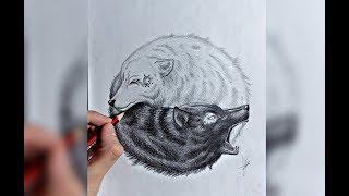 Como Dibujar Lobos