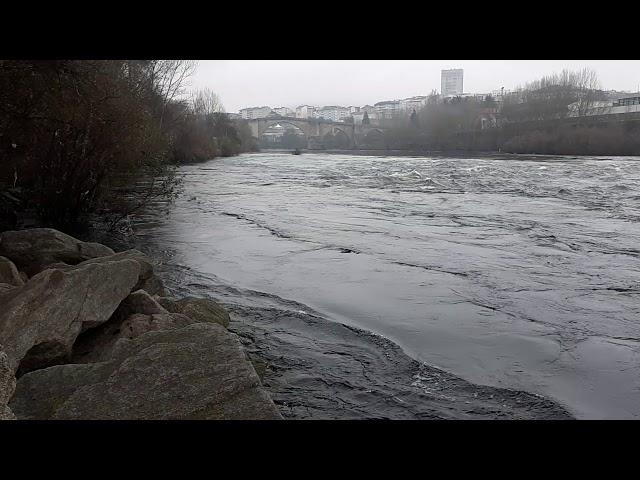 elcercano en el río Miño