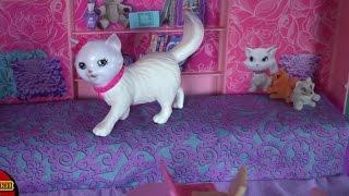 Куклы Барби Жизнь в доме мечты, Секрет домашних животных Таффи и Блиссы, Мультфильмы для детей