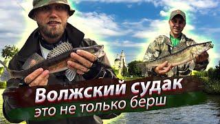 Река Волга, Россия. Рыбалка на реке. Судак, окунь и берш на джиг. 2018/08