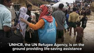 David Morrissey: Rohingya refugees need your support