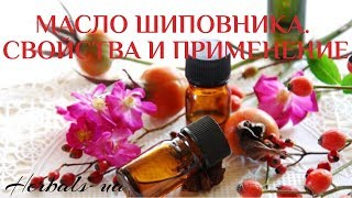 масло шиповника. Свойства и применение