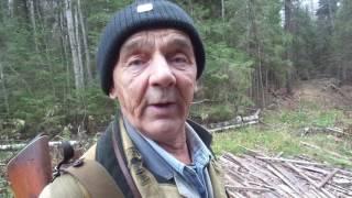 Охота на зайца Дмитрий Репницкий