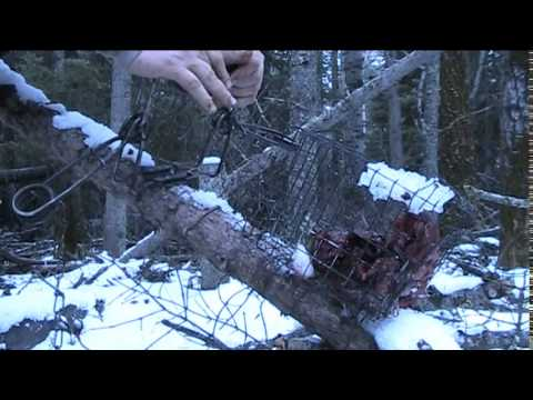 How To Trap Series: Marten/Fisher Running Pole Set