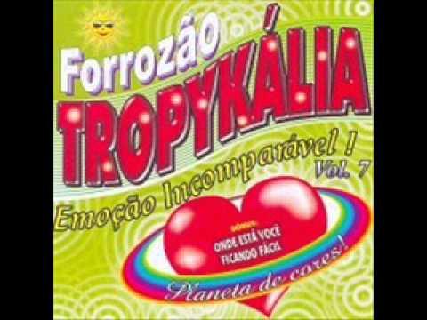FORROZAO PLANETA CD CORES TROPYKALIA BAIXAR
