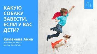 Выбор собаки для детей. Породы собак для детей.