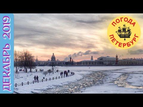 2019.12.01. Погода Петербург. Вечер. Снегу навалило хорошо.