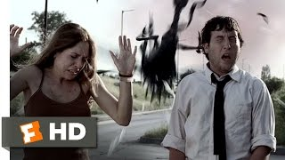 Video Infestation (6/10) Movie CLIP - The Swarm Attacks (2009) HD download MP3, 3GP, MP4, WEBM, AVI, FLV Oktober 2017