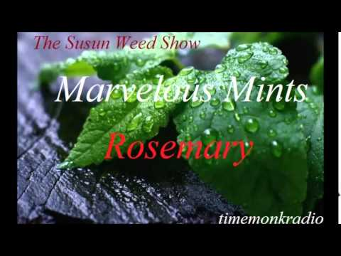 Susun Weed Show  ~  Marvelous Mints  ~  Rosemary  SWS1129