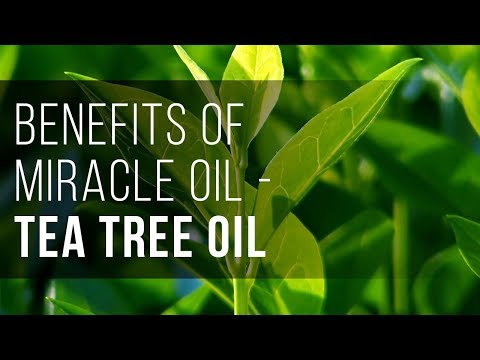 Benefits Of Miracle Oil - Tea Tree Oil