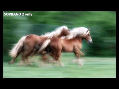 Vivaldi - Laudamus Te - SOPRANO 2 only. Tania mix