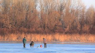 Зимняя рыбалка (Живая картина).