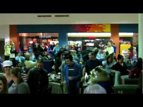 Flash Mob Cupid Shuffle Great Northern Mall 02/16/2013