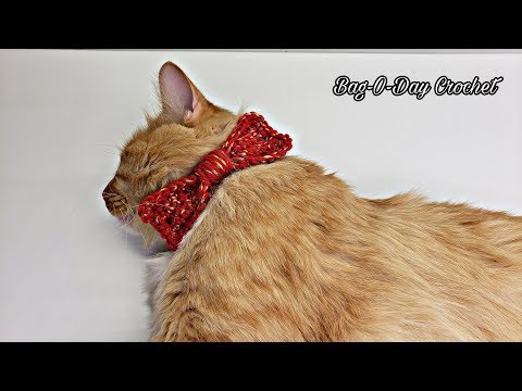 How To Crochet Easy Cat Dog Bow Tie Collar | Steven's Birthday Suit | BAGODAY CROCHET TUTORIAL #521
