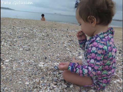 Chegamos em Punta del Este - Bella na praia pela 1 vez   TATA GULUSIAN | Viagem