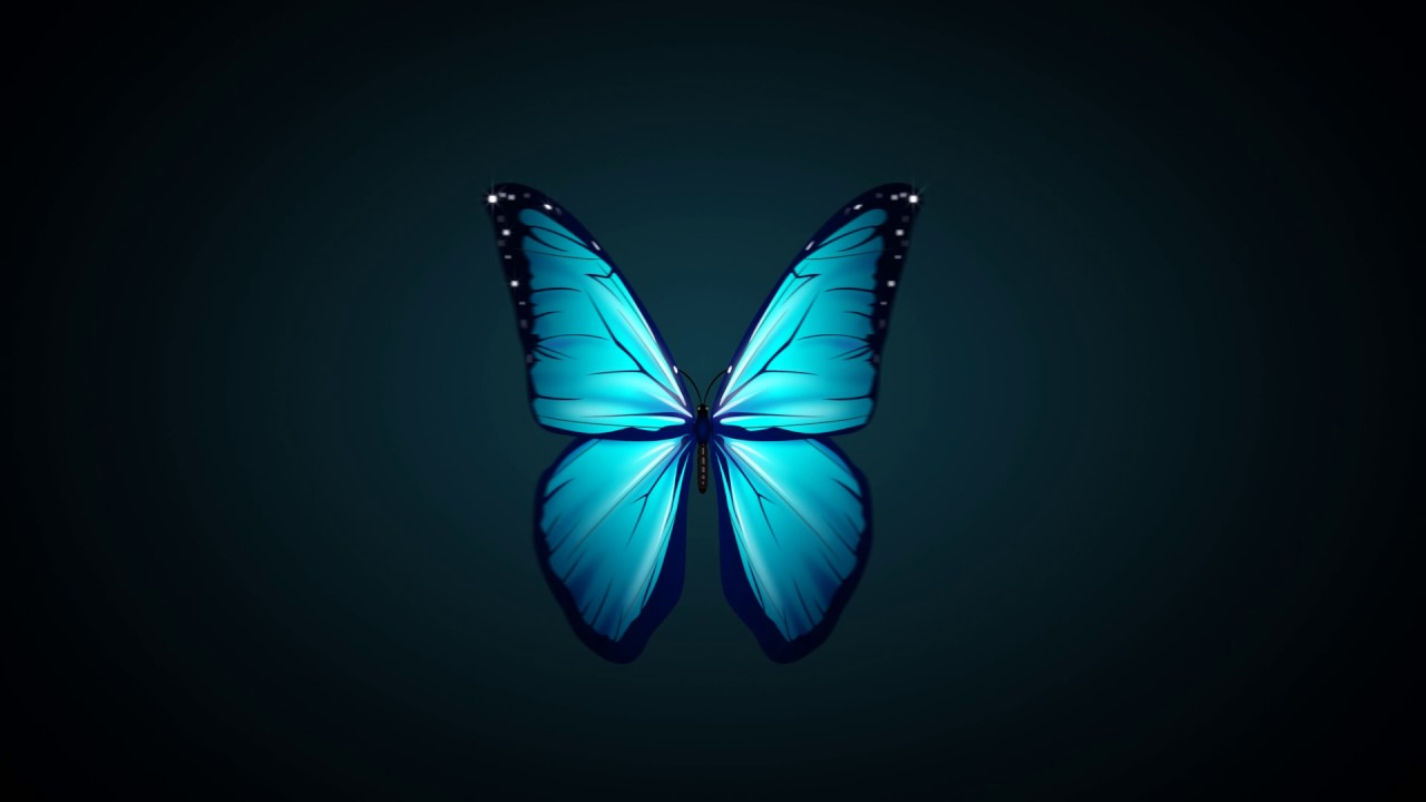 Butterfly Wallpaper For Desktop With Animation Blue Butterfly Flapping Wings Free Motion Graphics Youtube